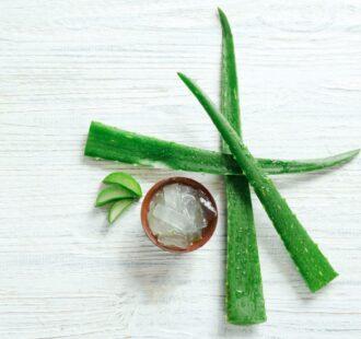 I benefici dell'Aloe Vera per la salute della bocca